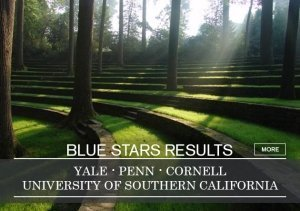 Blue Stars the best college admissions consultant
